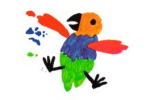 La marouette Moho était l'oiseau le plus beau de tous ceux qui peuplaient l'île de Rimatara