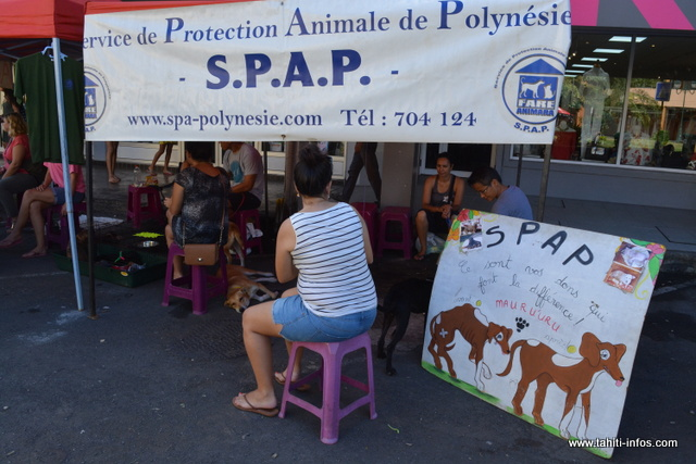 Le service de protection animale de Polynésie était aussi de la partie afin de trouver des familles adoptives pour leurs pensionnaires.