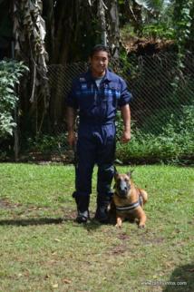 Au cœur de la brigade cynophile de la police municipale de Papeete