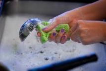 Algérie: 412 Algériennes battent le record Guiness de vaisselle simultanée