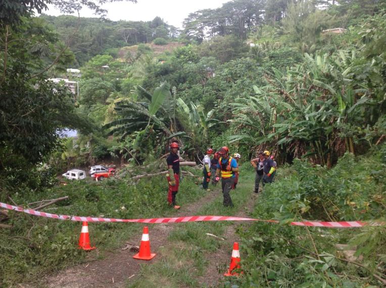 15 agents communaux de Mahina ont suivi une formation bûcheron la semaine dernière.