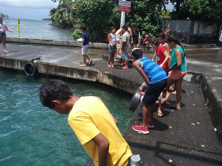 """""""Les enfants ont bien compris que le corail est, à la fois un animal, un végétal et un minéral"""", explique Vaite Pifao, professeur des écoles en classe de CM2."""