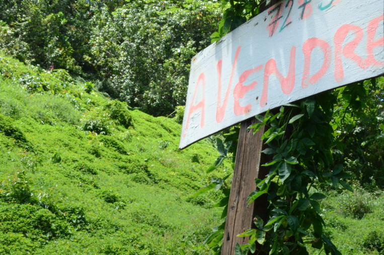 Achat et vente de terrain : nos explications sur la procédure