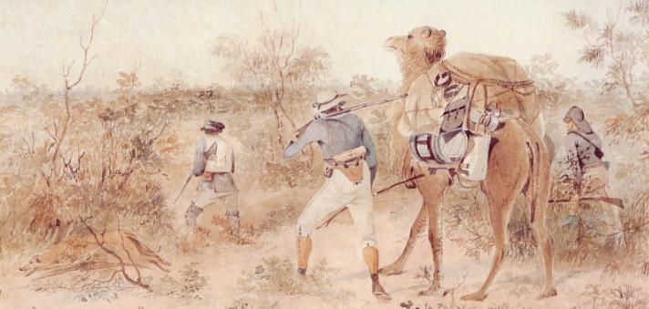 Une des aquarelles de Gill montrant Harry, le dromadaire et Horrocks avec le fusil qui lui arracha un doigt, la joue gauche et des dents de la mâchoire supérieure.