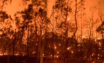 5.000 pompiers combattent des feux de forêt en Californie