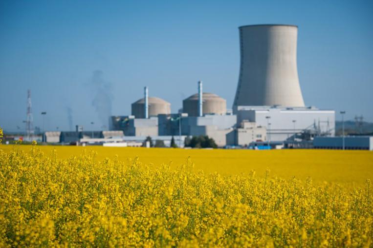 """Hulot sort du bois en évoquant """"jusqu'à 17"""" fermetures de réacteurs nucléaires"""