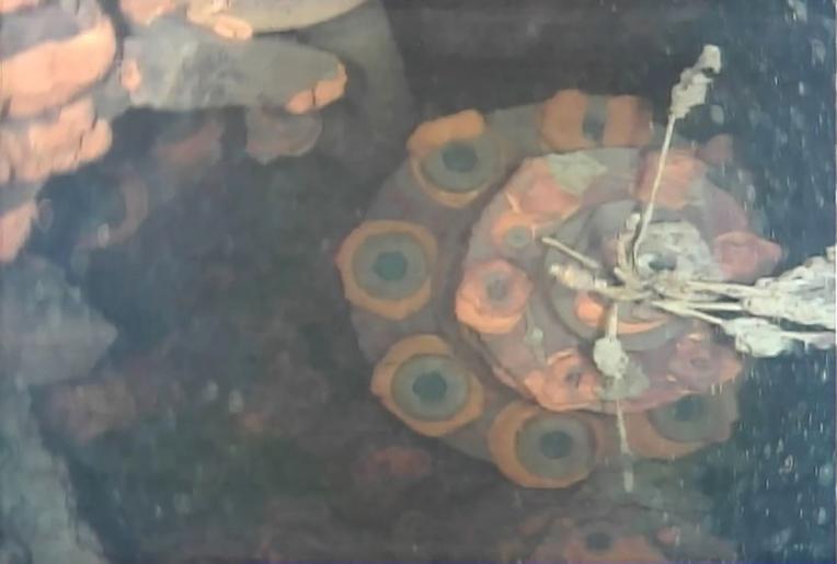 Fukushima : un robot parvient à inspecter l'enceinte d'un réacteur saccagé