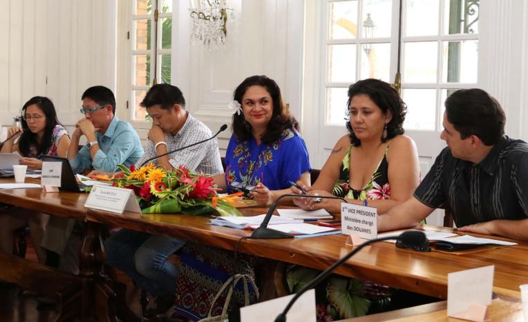 Nicole Bouteau, ministre du Tourisme, jeudi durant la réunion de la commission consultative de la navigation charter.