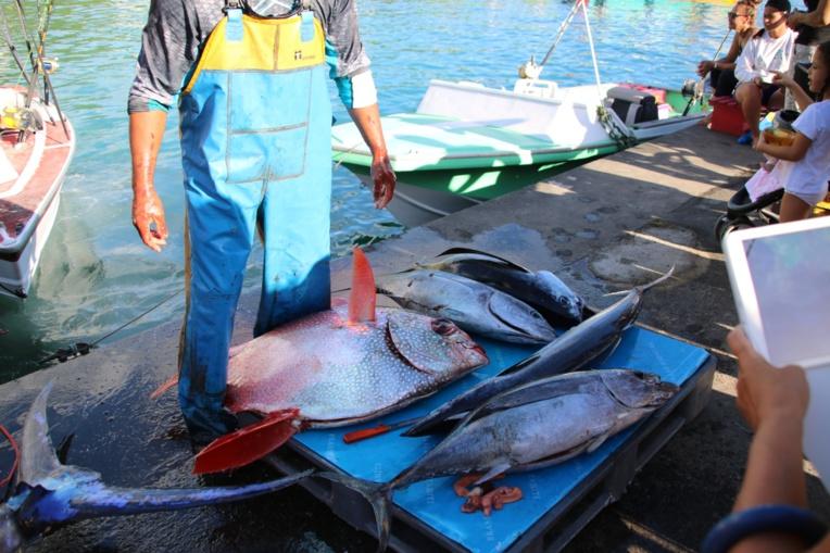 CESC : 18 voix pour les aides à la pêche