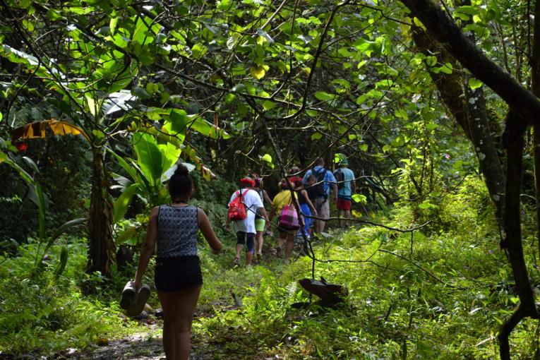 C'est une découverte entre nature et culture que vous propose Tahiti Tourisme.