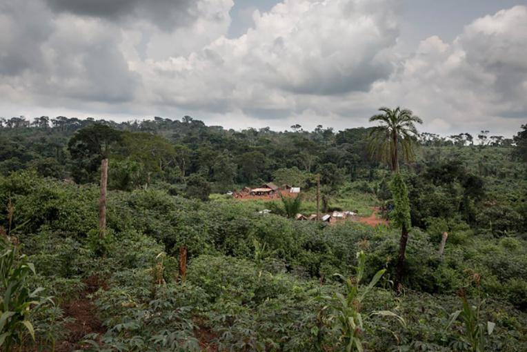 RDC: 40 morts dans un glissement de terrain dans le nord-est