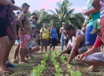 Atanas Mo'o, en CDL (Chantier de Développement Local) avec l'Association Hotuarea Nui, a patiemment expliqué le travail de la terre aux enfants. Photo Marutaha-Nui