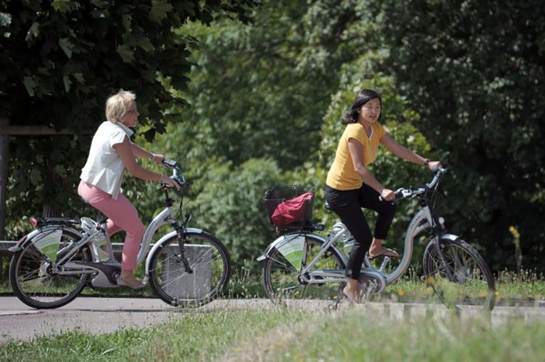 Le gouvernement met des bâtons dans les roues du vélo électrique