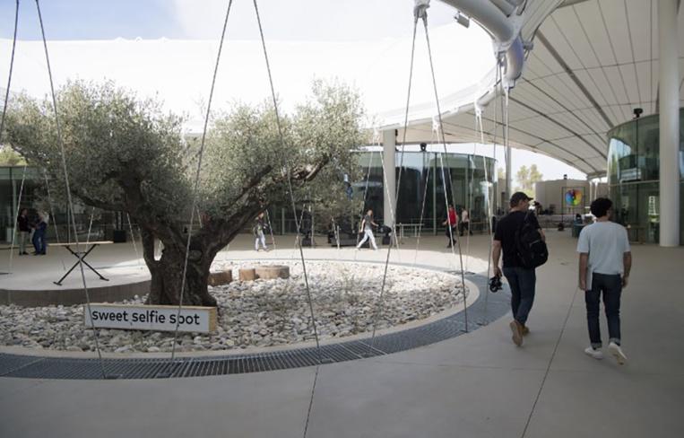 """Start-up et pâte à modeler : thecamp veut """"explorer le futur"""" dans la garrigue"""