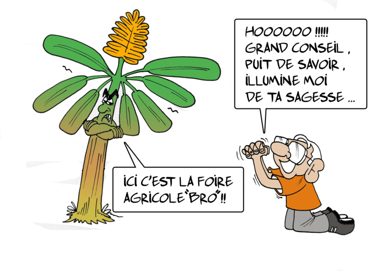 """"""" La Foire agricole """" par Munoz"""