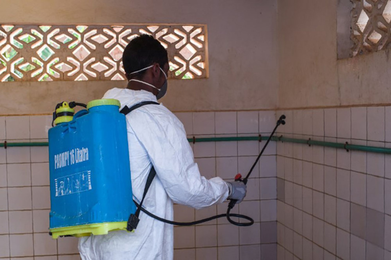Madagascar: deux universités fermées pour cause de peste, 33 morts