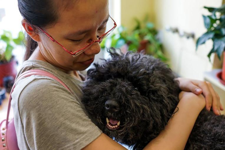 En Italie, des jours de congés pour soigner un animal malade