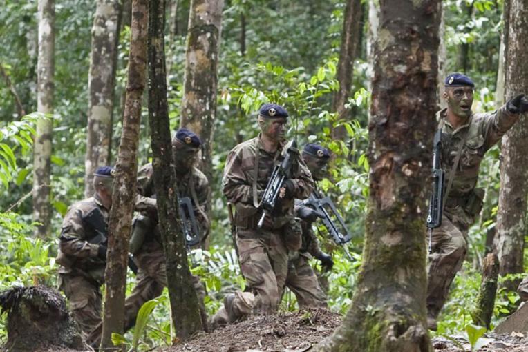Des militaires du Rima et des gendarmes participent à un entraînement d'action.