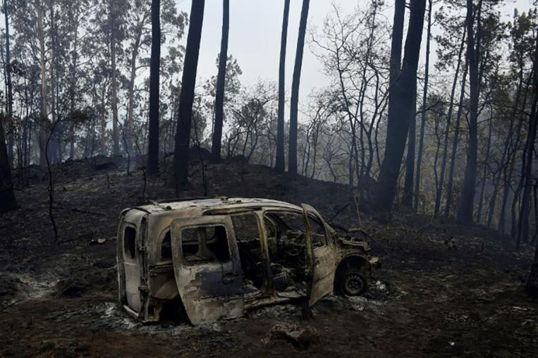 Incendies au Portugal et en Espagne: plus d'une trentaine de morts