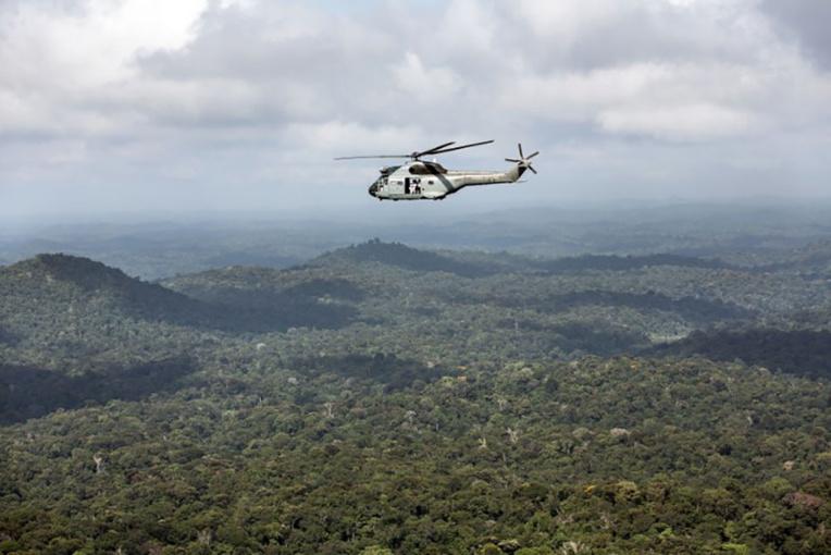 La déforestation due à l'orpaillage s'est accélérée sur le Plateau des Guyanes