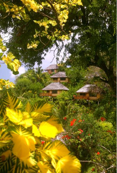 A travers le feuillage panaché d'un splendide « kenae » (Erythrina variegata), apparaissent les bungalows de l'hôtel, nichés dans un parc de sept hectares.