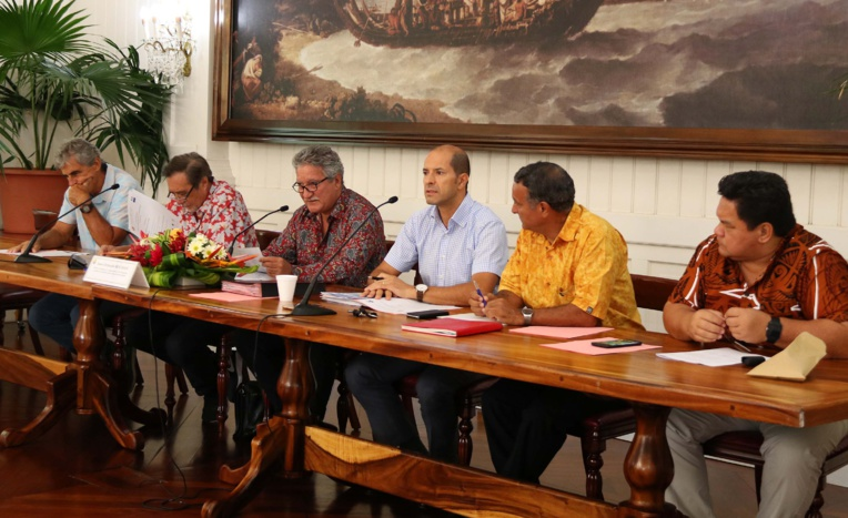 Le ministre a tenu tout d'abord à rappeler le rôle du comité de pilotage du programme de rénovation urbaine et à saluer l'active mobilisation des communes et des services du Pays.
