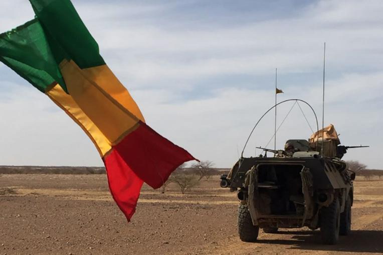 Onze soldats maliens prisonniers tués après un raid français