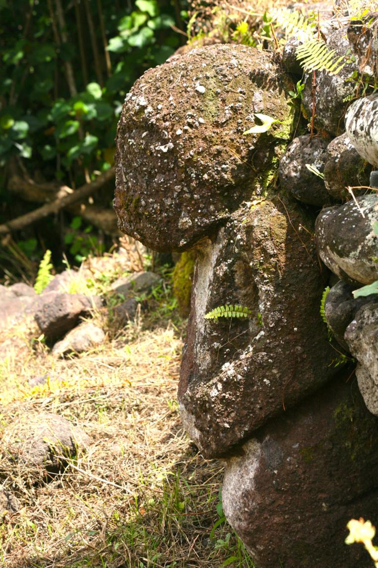 Un des tiki de la plate-forme supérieure du meae Paeke, semblant garder le site.