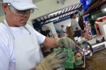 L'obligation d'emploi des travailleurs handicapés étendue au secteur public