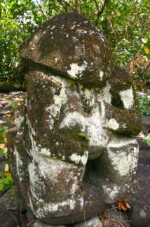 Un  tiki moderne de Hikokua, surnommé par certains le « tiki tortue » à cause de la forme de sa tête.