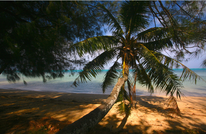 La plus grande île des Australes (45 km2) offre avant tout des plages magnifiques aux visiteurs.