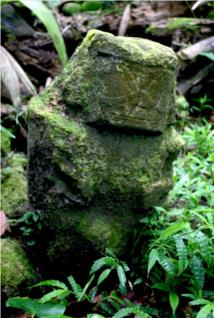Le premier tiki découvert sur le site de Te Fiifii ; la tête est bien conservée, mais le corps est endommagé.