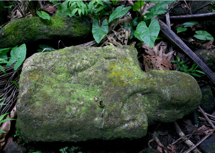 Sur le site de Te Fiifii, le deuxième tiki avec sa main touchant son menton. Offrande portée à la bouche ou humiliation d'un rival qui aurait été mangé (interrogation de l'archéologue Pierre Ottino-Garanger) ?