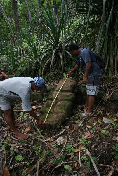 Ce tiki parfaitement bien conservé mesure 155 cm. Il ne s'agit, bien entendu, pas d'une découverte (ce tiki a déjà été recensé), mais d'une redécouverte qui pourrait intéresser de nombreux visiteurs se rendant à Puamau.