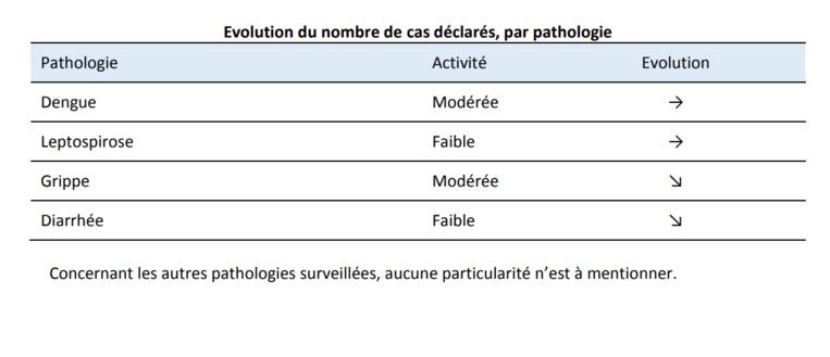 Veille sanitaire : bilan de surveillance des semaines 49 et 50 en Polynésie
