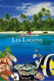 Immersion totale dans L'Océan marquisien