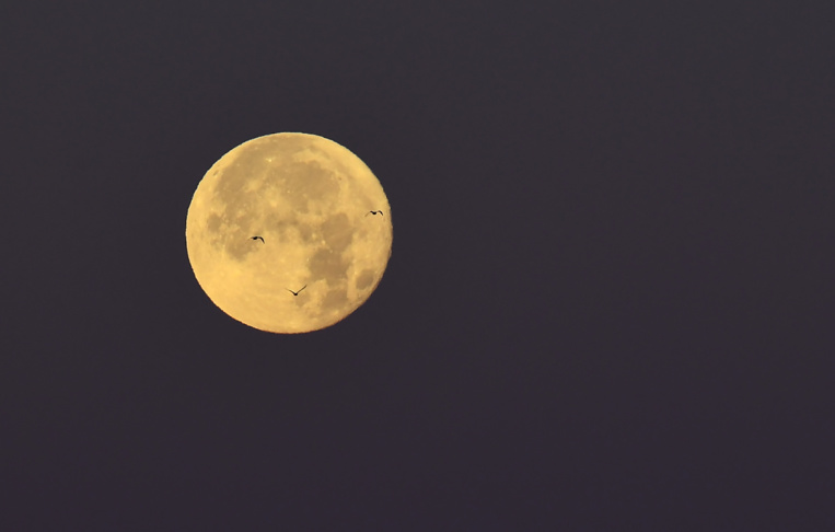 """La Polynésie, le meilleur endroit pour observer la """"super lune bleue de Sang"""""""