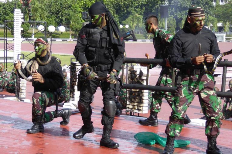 """Le ministre américain, le cobra et le """"terroriste"""""""