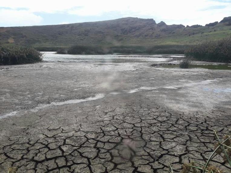 Le lac du cratère du Rano Raraku tel qu'il n'avait encore jamais été vu ; sa surface est craquelée par une interminable sécheresse.