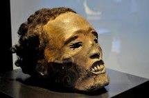 Un « Toi Moko », tête momifiée Maori, hommage d'un clan à ses plus prestigieux guerriers