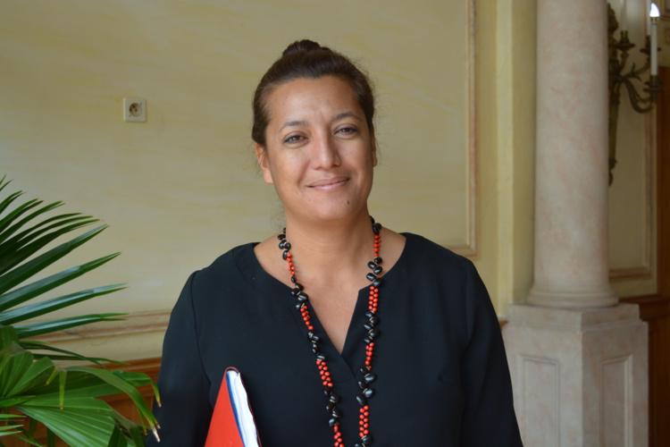 Association de défense des femmes : des moyens insuffisants selon Maina Sage