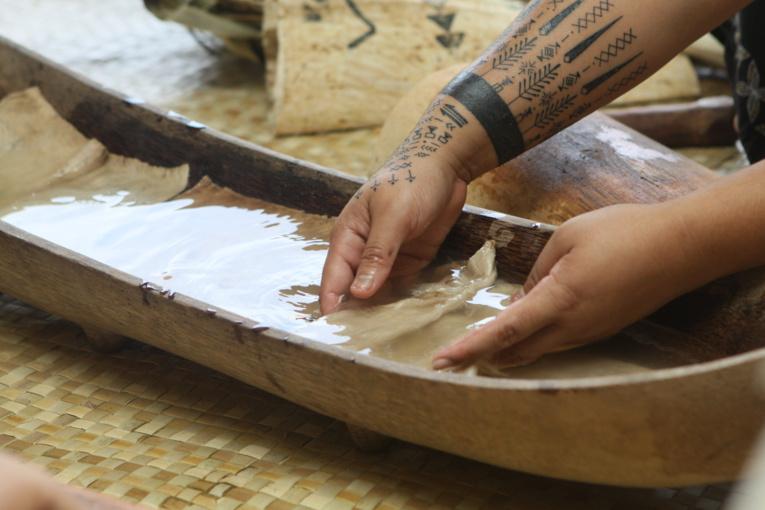 Des ateliers de percussions, de tressage et de confection d'éléments de costumes de danses, ainsi que des ateliers liés aux Pléiades sont également prévus dans l'année.