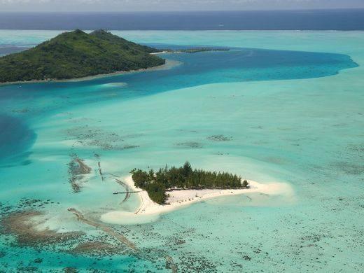 L'administrateur judiciaire des propriétaires voudrait vendre le motu Tapu aux enchères. Le prix de départ serait fixé à 5 milliards de francs.
