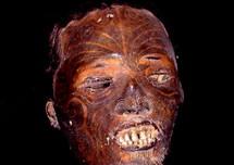 Une tête momifiée « Toi Moko », hommage d'un clan Maori à ses plus prestigieux guerriers.