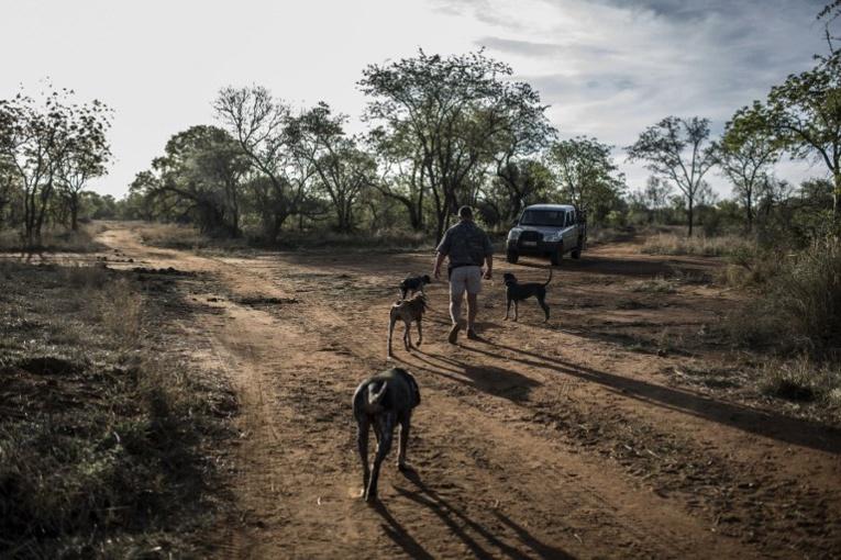 """L'Australie courtise les Sud-Africains blancs """"persécutés"""", Pretoria enrage"""