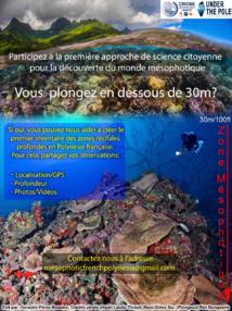 Vous plongez en dessous de 30 mètres ? Testez la science participative !