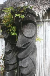 Vous rêvez de fougères d'Ambrym chez vous ? Rappelez-vous que seuls les sculpteurs de cette île sont autorisés à les travailler selon ce design. Vous n'en trouverez donc pas ailleurs (sinon dans les galeries de Port-Vila ou de Nouméa).