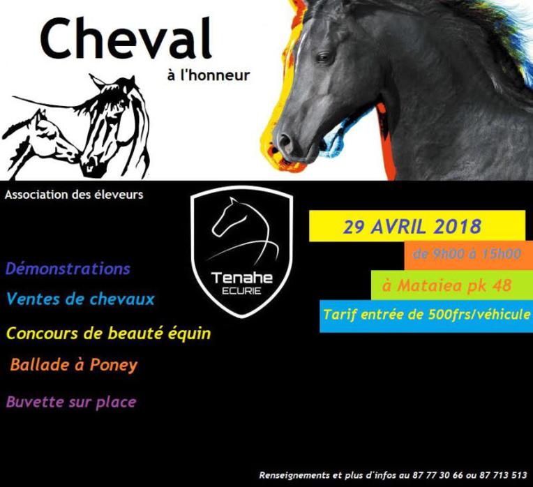 Un concours de beauté et une vente aux enchères de chevaux à Mataiea