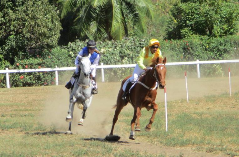Les chevaux ne vont pas chômer en ce 1er mai ! Crédit ahee.