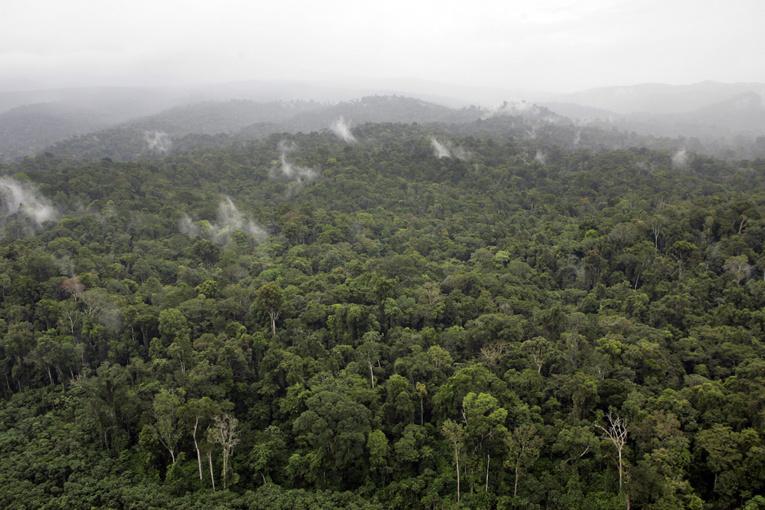 Guyane : deux morts, un blessé grave dans un accident d'hélicoptère